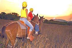 13_hacienda_horsebackriding_640x425.jpg