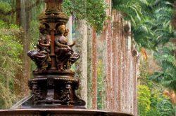 5_laender_quer_durch_suedamerika_von-chile_bis_brasilien_brasilien_rio_botanical_garden.jpg