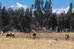 5_laender_quer_durch_suedamerika_von-chile_bis_brasilien_peru_fahrradtour_im_hochland.jpg