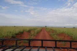 7_safari_uganda-1.jpg
