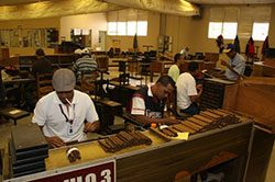 la-aurora-cigar-factory.jpg