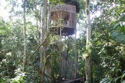 safari_uganda-2.jpg